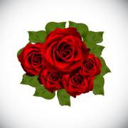Realistic Rose High Quality Vector Illustration Piirros