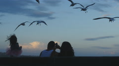 Little girl silhouette feeding seagulls 4K Stock Footage