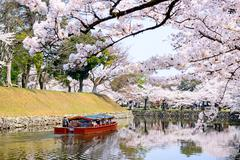 Moat of Hikone Castle Stock Photos