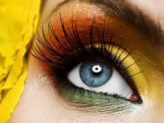Woman eye with colorful make-up and long false eyelashes - gerber flower Stock Photos