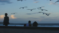 Child chases seagulls at beach 4K Stock Footage
