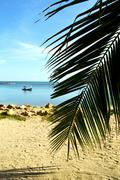 Asia   kho bay isle     pirogue palm and     sea Stock Photos
