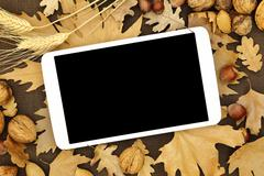 Tablet with blank screen on Autumn background - stock photo