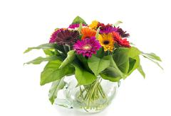 vase with bouquest of gerbra - stock photo