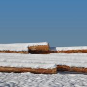 Timber stacks on snow Stock Photos