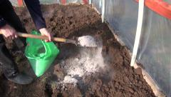 Gardener fertilize soil in greenhouse with natural wood ashes Stock Footage