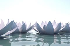 Zen loto flowers in water - stock illustration