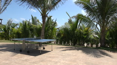 Tropical Ping Pong Table Pan Stock Footage