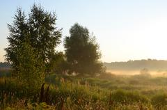 August morning - stock photo