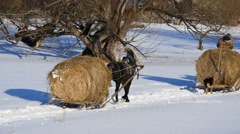 HD Stock Footage Slow Motion Horses Carry Hay in the Snow Stock Footage