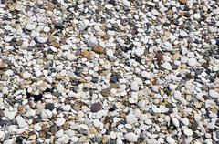 Smooth pebbles on beach Stock Photos
