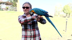 Playing with parrot macaws ( Ara ararauna) Stock Footage