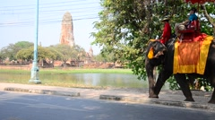 Traveler riding elephant for tour around  Ayutthaya ancient city in Thailand Stock Footage