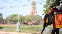 Traveler riding elephant for tour around  Ayutthaya ancient city in Thailand - stock footage