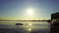 The surface of the river on a sunny day Stock Footage