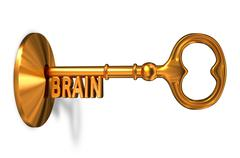 Brain - Golden Key is Inserted into the Keyhole - stock illustration