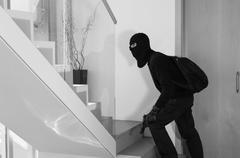 Burglar stealing - stock photo