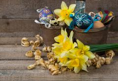 Easter decorative eggs in a pot and flowers of narcissus Stock Photos