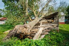 Old Barn Damaged By Recent Hurricane - stock photo