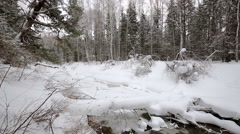 Spring. wild river in the Siberian taiga. Stock Footage