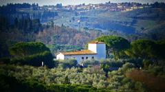 Italy Tuscany Toscana scenic Landscape Olive tree plantation - stock footage