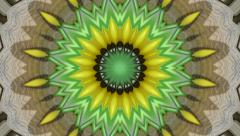Spring kaleidoscopic animation of yellow flower on gray background. - stock footage