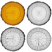 Set tree rings saw cut tree trunk background. Vector illustration. Stock Illustration