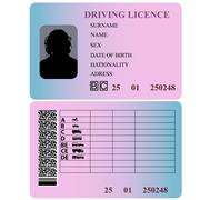 Driving license woman. Vector illustration. Stock Illustration