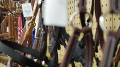 Horse bridle in store Stock Footage