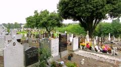 Glasnevin Cemetery, Dublin Stock Footage
