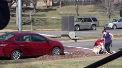 Street views locations St. Louis, woman kicking dog Stock Footage