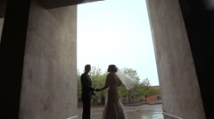 Groom and bride holding hand Stock Footage