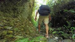 Hiking jungle gully Stock Footage