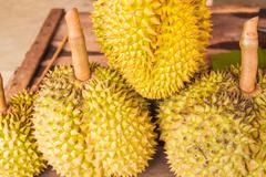 Durian fruit of South East Asia Stock Photos