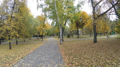 Autumn in the city park. Aerial view shot Stock Footage