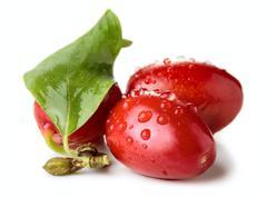 Cornel berries Stock Photos