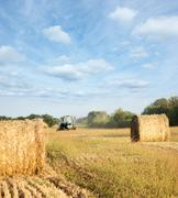 Harvesting Stock Photos