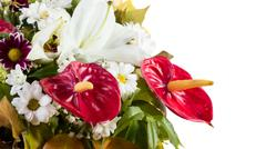 Anthurium flower bouquet - stock photo