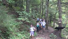 4K Tourists Climbing Mountains, Hiking Trip, People Walking on Forest Path Trail Stock Footage