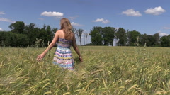 Pregnant woman walk between ripe barley crop ears Stock Footage