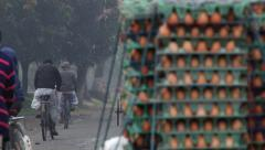 People transport eggs by bicycles on a cold foggy morning in Puthia, Bangladesh. Stock Footage