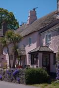 Pink thatched house - stock photo