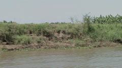 The banks of the Mekong River as seen from a boat in Cambodia Stock Footage