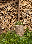 Log store and leaves - stock photo