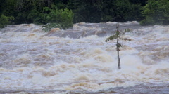 The power of the tropical river in Africa, Equatorial Guinea - stock footage