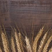 ears of rye on wooden background - stock photo
