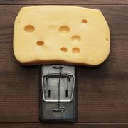 big piece of cheese in mousetrap - stock photo