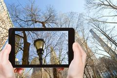 tourist photographs of bare trees in New York - stock photo