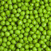 sweet green peas background - stock photo