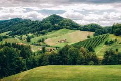 Landscape in Southern Styria - stock photo
